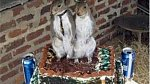 Nejulítlejší svatební dorty, které jste kdy viděli