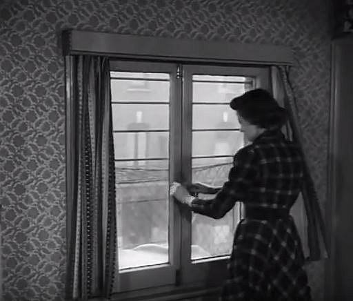 Na ženy v domácnosti byly kladeny vysoké požadavky. Matka musela zvládat péči o děti a zároveň mít perfektní domácnost.