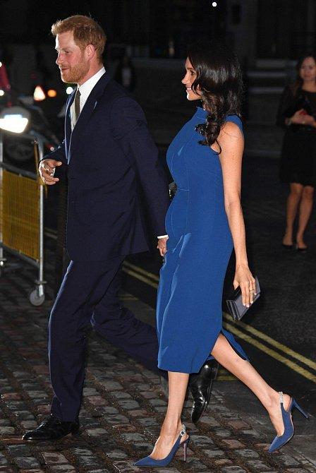 Meghan nedávno byla viděna v modrých šatech, které jí velmi slušely, ale vyvolala spoustu otázek, zda náhodou není těhotná.