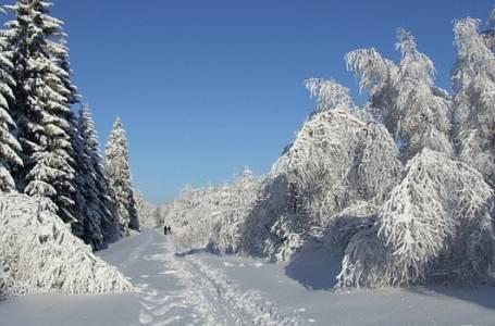 Česko křížem krážem - Jizerky lyžím zaslíbené