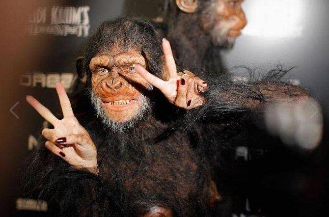 Heidi a Seal v kostýmů šimpanzů.