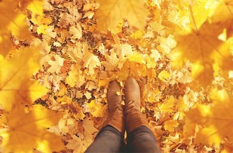 Móda: Botky, které vám zpříjemní podzim