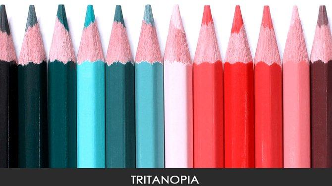 Takto vidí barvy člověk s tritanopií, ztrátě citu vůči modré barvě. Vidí ji spíše jako zelenou.