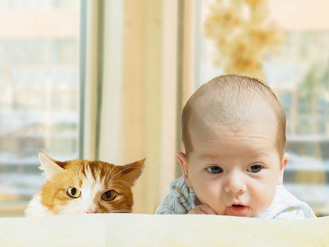 Z dítěte a domácího mazlíčka se většinou stanou skvělí parťáci.