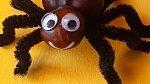 S drátky můžete vyrobit pavoučka.