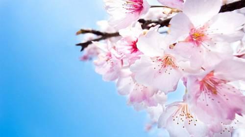 Velký horoskop na květen