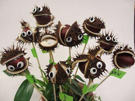 Z nevyloupaných kaštanů můžete vytvořit masožravé kytičky.