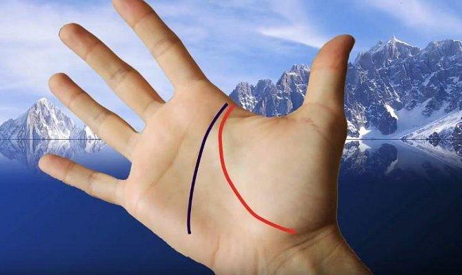 Hlavní čára nebo také čára hlavy. Ti, kteří jsou realištičtí mají tuto čáru na horní polovině ruky, snílkům zase čára zasahuje do spodní poloviny dlaně.