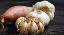 Cibule a česnek začnou velmi brzy klíčit a plesnivět.