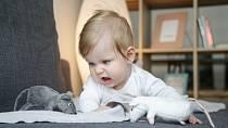Děti by radši živé mazlíčky než kopu plyšáků.
