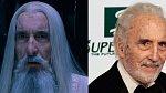 Saruman, pobočník Saurona, který přeběhl z dobré strany na temnou. Hrál ho Christopher Lee, milovník Pána prstenů, který od dětství toužil hrát Gandalfa, ale nakonec mu role moudrého bílého čaroděje seděla více. Přátelil se s J. R. R. Tolkienem.