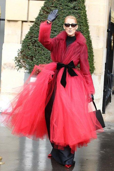 Céline Dion má velmi výrazný styl. Vyznačuje se luxusem, barvami, vzory neobvyklými střihy a bláznivými kombinacemi.