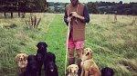 James je velkým milovníkem psů.