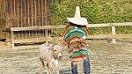 Ilustrační foto - oslík a Kolumbijec