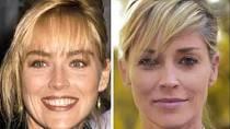 Celebrity, které podstoupily plastiku nosu - Sharon Stone