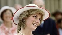 Camilla se stala nástupkyní princezny Diany. Může používat stejný titul - princezna z Walesu, ale z úcty k ní tak nečiní.
