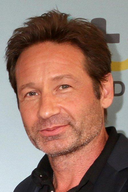 Předtím než se David stal agentem Mulderem v Aktech X, zahrál si v roce 1994 postavu Jakea Winterse v jedné epizodě v soft porn sérii Red Shoe Diaries. To ovšem nebylo jediné představení tohoto herce ve filmech s obsahem pro dospělé.