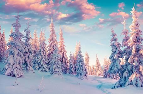 Jaká zima nás čeká?