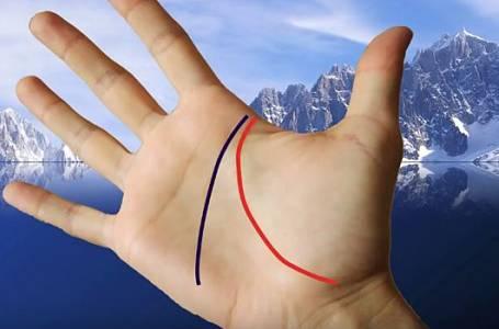 Podívejte se na své dlaně! Minikurz, jak vyčíst osud krok za krokem