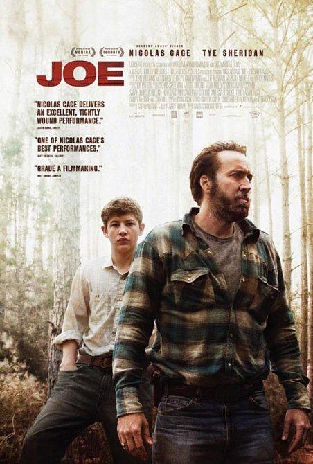 Poslední dobrý počin před kamerou: Joe (2013)