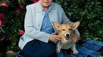 Královna se svými psími oblíbenci