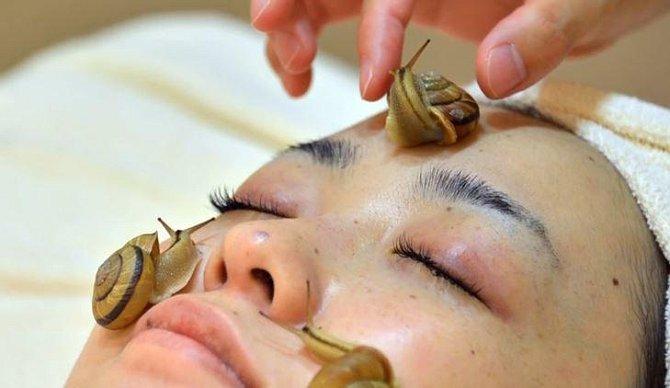 Šnečí sliz je v kosmetice používán poměrně často. Japonky si oblíbily také masáž speciálním druhém šneků.