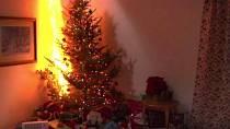 Vánoční stromky mají ročně na svědomí několik stovek požárů a také několik desítek mrtvých...