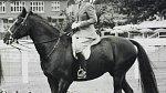 Koně a psi jsou královninou životní láskou.
