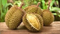 Ovoce: Ano, je to tak! Chlebovník neboli durian je sice velmi chutný, ale zároveň je to také velmi zapáchající exotické ovoce. V Thajsku s ním nesmíte vstoupit ani na letiště, což se samozřejmě dozvíte z všudypřítomných informačních cedulí.