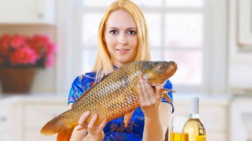 Vánoční ryba není jenom kapr!