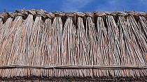 Střechy některých chudých domů propouětěli cokoliv, co na ně dopadlo, hlavně tedy ptačí exkrementy.