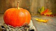 Velký horoskop na listopad