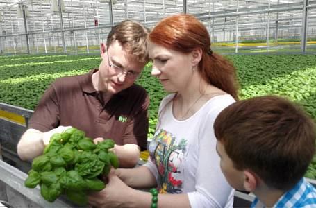 Farma na bylinky