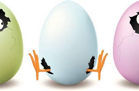 Vejce a VY: Všechno, co potřebujete před Velikonocemi vědět