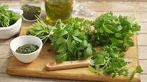 Zelené bylinky nesmějí v kuchyni chybět