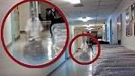 V Dánsku, v nemocnici, se podařilo zachytit ducha, který se každý večer objevuje na chodbě chirurgického oddělení