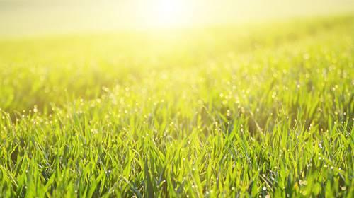 VELKÝ HOROSKOP NA ČERVEN: Co vás čeká a nemine první letní měsíc?