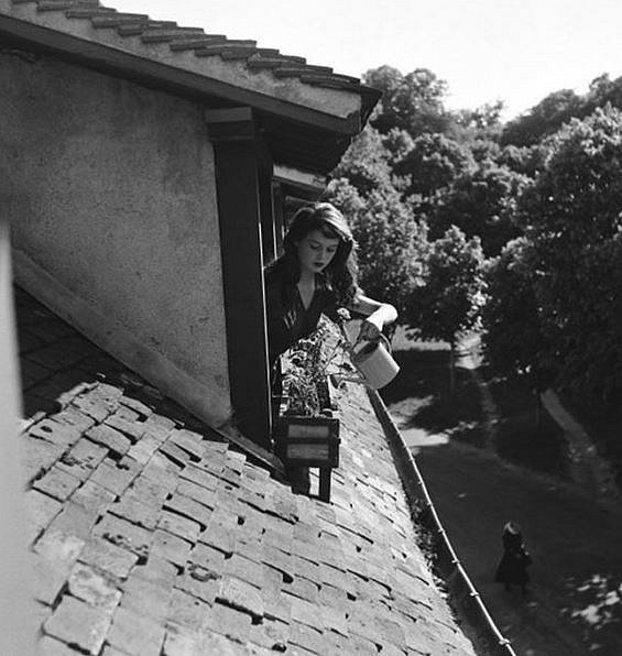 Brigitte Bardot 1952
