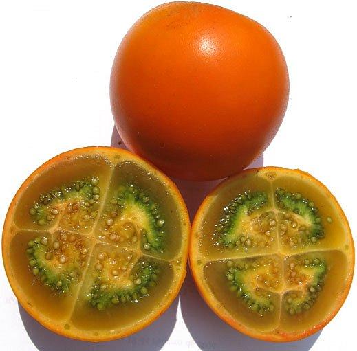 narančila - plody