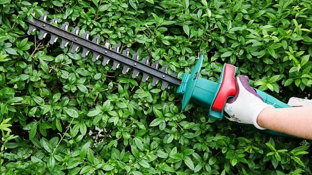 Plotostřihy výrazně usnadňují péči o živé ploty.