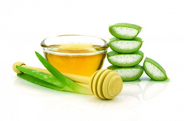 Olivový olej a aloe vera je jistota, která obtížný hmyz odradí.