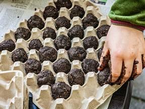K usušení seed bombs se výborně hodí papírová plata od vajec.