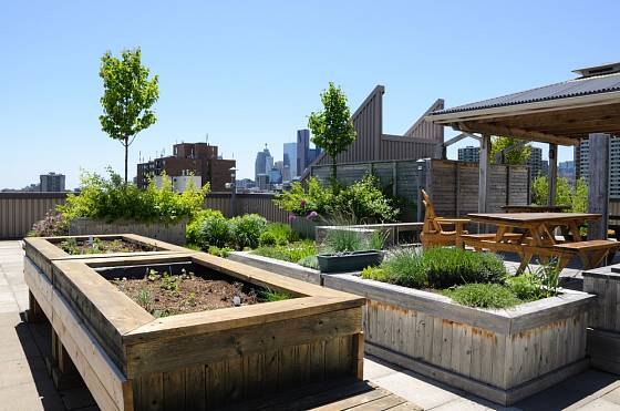 Vyvýšené záhony mohou být součástí střešní zahrady.