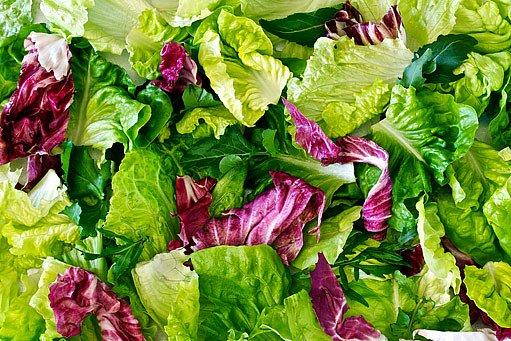 červená čekanka zpestří i ochutí salát