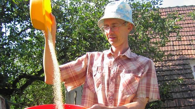 Při přesypávání z misky do misky na mírném vánku odstraníme lehké nečistoty