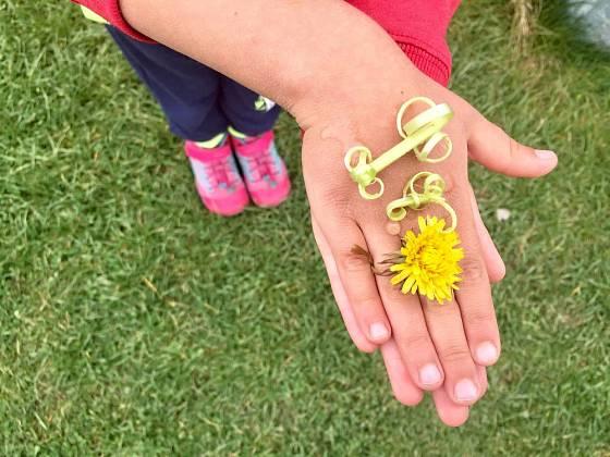 Prsten z květu pampelišky.