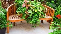 Letnění pokojovek na zahradě