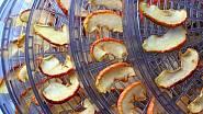 Sušení je skvělou metodou uchovávání ovoce, zeleniny i hub.