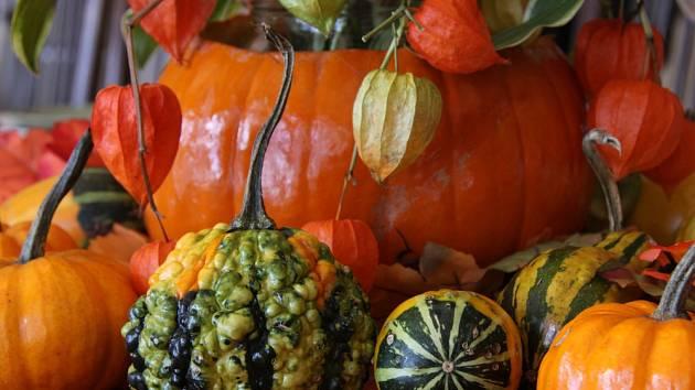 Mochyně a dýně spolu tvoří dokonalou dvojici podzimních materiálů vhodných pro dekoraci interiéru.