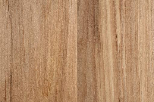 dřevo oskeruše